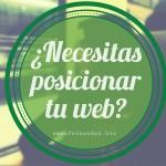 Posicionamiento Web/ SEO Asturias